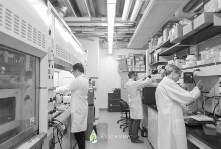 Avicanna Strengthens Position as a Canadian Leader in Cannabinoid R&D Through University of Toronto Collaboration & University of Guelph Agreements