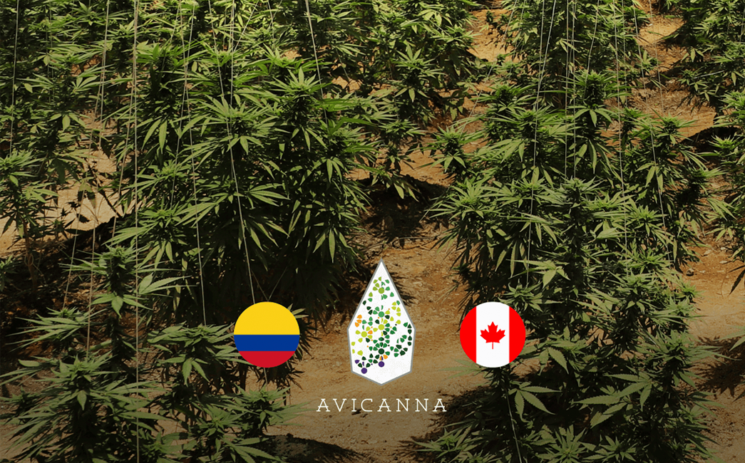 Avicanna (TSX: AVCN) Completes its First Exportation of Cannabinoids from Colombia to Canada for Scientific Purposes