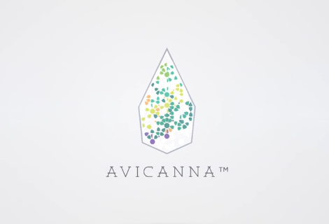 Avicanna Closes Non-Brokered Private Placement with Group of Strategic Investors and Announces Warrant Re-Pricing